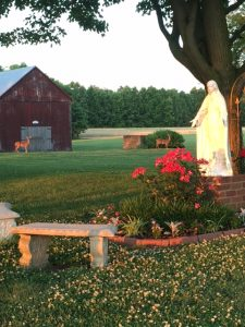 Statue of Mary and a bench and flowers, barn in the background with two deer