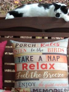 Black and white cat lying on top of a bench above a decorative pillow
