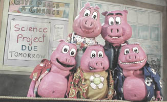 five pig puppets posing in a group